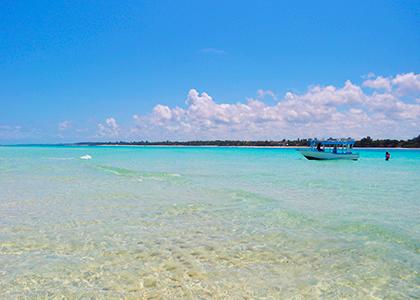 Mombasa krystklare havvand
