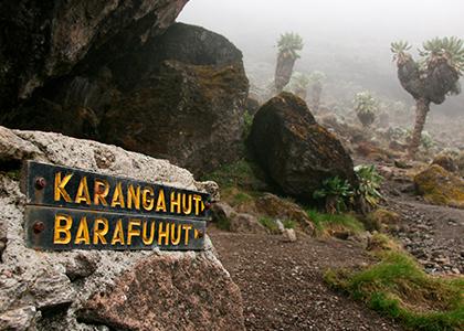 Bestige Mount Kilimanjaro i Tanzania