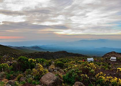 Landskabet på vej op af Kilimanjaro