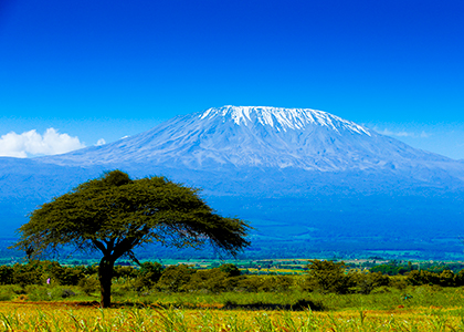 Mount Kilimanjaro udsigt fra savannen
