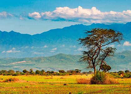 Rwenzori bjergene på grænsen mellem Uganda og Congo